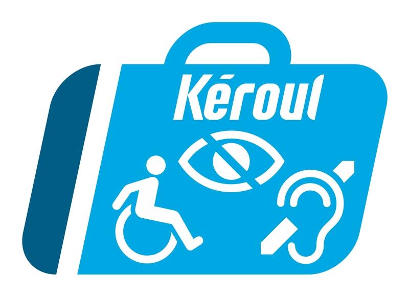Pictogramme valise : symbole fauteuil roulant, oeil barré et oreille barrée